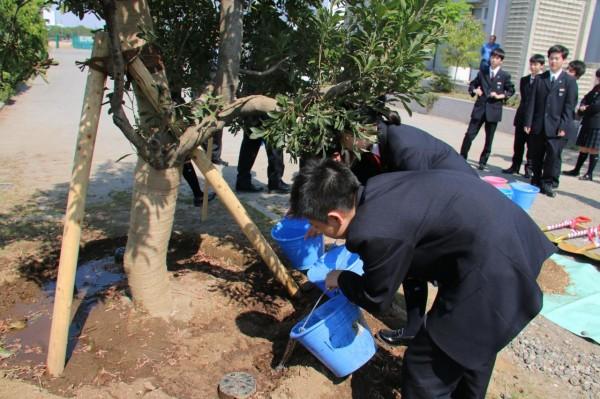 平成27年度 植樹祭