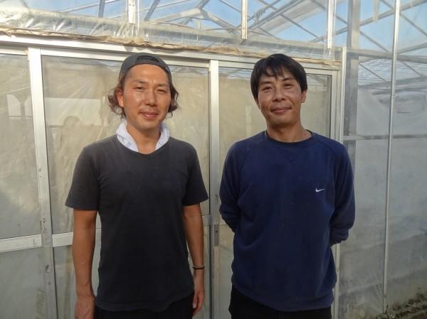 胡瓜の収穫体験をしてきました