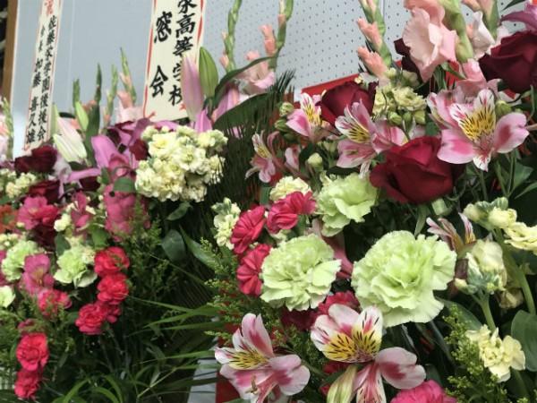 花咲の花便り①