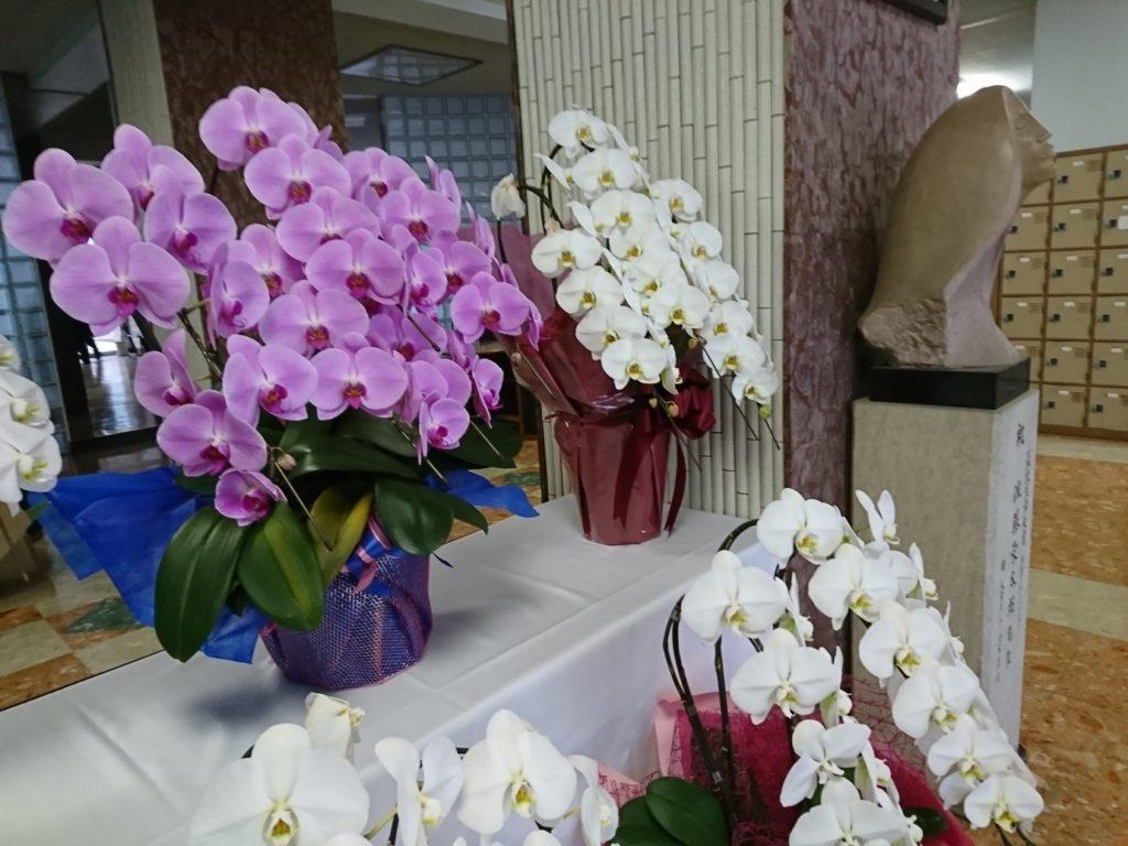 花咲万華鏡1