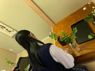 茶道部「花所望」のお稽古を行いました
